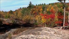 Foliage on Blue Job Mtn. (TimmyDennis) Tags: fall autmn new hampshire mountain mountains outdoors outdoor woods forest weather nature view vista