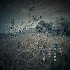 () () () #photoikku #haiku #jhaiku #winter # #snapseed # #photohaiku #japan #poetry # (Atsushi Boulder) Tags: instagramapp square squareformat iphoneography uploaded:by=instagram poem poetry verse haiku    winter     photo photoikku snapseed photohaiku