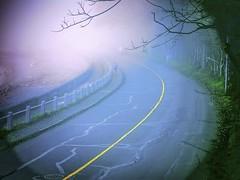 Ross Bay Jog (SheffieldStar) Tags: bc canada vancouverisland victoria britishcolumbia weather fog jogger vivid road curve emerging fresh beach waterfront ethereal