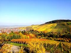 Beautiful autumn (DrQ_Emilian) Tags: fall autumn colors light hills vineyards view landscape season trees sky town oktober kernen stetten germany europe badenwrtemberg