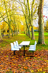Forever autumn, Crystal Palace Park, London (MJ Reilly) Tags: london southlondon canon s100 powershot se19 crystalpalace crystalpalacepark bench cafe seats emptyseats autumn leaves winter park
