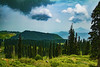 IMG_2184 (Rambonp:loves all creatures of this universe.) Tags: gulmarg jk kashmir tulips flowers yellow wallpaper red white trees green nature park day india paradise blue canon landscape sky clouds silhouette snow mountains hills hillstation touristplace tourism