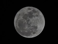 Super Moon - Nov. 2016 (SivamDesign) Tags: canon eos 550d rebel t2i kiss x4 300mm tele canonef300mmf4lisusm kenko pro300 caf 14x teleplus dgx extender luna super moon night december 2016