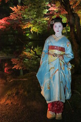 Maiko20161119_06_07 (kyoto flower) Tags: kodaiji temple fukuno kyoto maiko 20161119      noblesseoblige