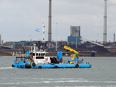 ALLIGATOR (Dutch shipspotter) Tags: utilityvessels pontoons workships