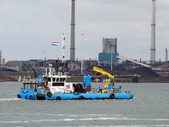 ALLIGATOR (Dutch shipspotter) Tags: utilityvessels pontoons workships
