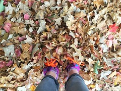 320/366 (moke076) Tags: 2016 365 366 project366 project 365project project365 oneaday photoaday cell cellphone iphone mobile self selfie portrait me shoes new balance bright colors leaves leaf autumn nature pile fall atlanta georgia cabbagetown walk