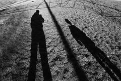 Shadowland (Mr Richie) Tags: panasonic lumix lx5 digital playground west norwood blackandwhite bw monochrome filmgrain