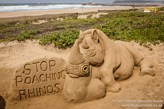 Stop Poaching Rhinos - Sand Art on Durban Beach Front, South Africa