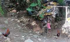 20150727_003 (Subic) Tags: people philippines hash