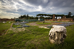 """Domus Flavia • <a style=""""font-size:0.8em;"""" href=""""http://www.flickr.com/photos/89679026@N00/21660928156/"""" target=""""_blank"""">View on Flickr</a>"""