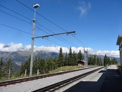 WAB Rack railway. (Franky De Witte - Ferroequinologist) Tags: de eisenbahn railway estrada chemin fer spoorwegen ferrocarril ferro ferrovia