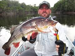 Amazonia 2012 (37)