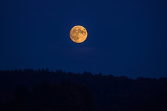 Todays Moonrise (Alias_Axel_Ryder) Tags: blue moon mountain yellow forest canon eos mond d hill berge gelb moonrise axel blau rise ryder wald 60 riesen aufgang riesig mondaufgang hgelo