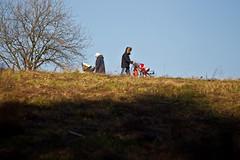 HE0G7097-01 (Бесплатный фотобанк) Tags: детскаяколяска желтыелистья женщинасколяской лесопарк осень парк солнце россия москва