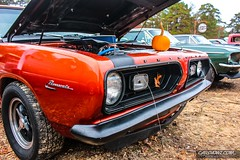 Pumpkin Run 00020
