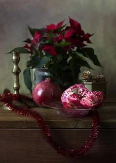 Winter Still Life with Pomegranates
