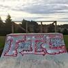 Brockville Halfpipe #2 (ViSiON (NZ)) Tags: streetart graffiti vision tic graffitiart talkischeap burga nzstreetart dunedingraffiti dunedinstreetart nzgraffiti nzgraffitiart dunedingraffitiart streetartdunedin