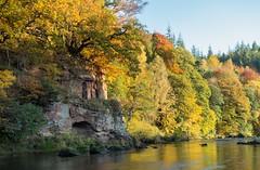 Autumnal colours, River Eden, Cumbria (Simrocks) Tags: autumn trees caves cumbria rivereden laceyscaves greatsalkeld