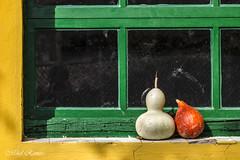 Kuiak/calabazas (mromeoruiz.wordpress.com) Tags: street paisajes naturaleza natura viajes otoo pueblos calabazas nafarroa udazkena paisaiak mundua beire bidaiak herriak zonamedia cosasdelacalle kuiak kalekogauzak