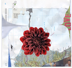 bloom (argyle plaids) Tags: red woman abstract flower art water floral girl collage illustration graphicart analog laughing paper paperart weird artwork arte map recycled handmade abstractart contemporary modernart surrealism glue fineart surreal petal cartography montage collageart laugh land photomontage bloom cutpaper surrealist analogue thumbsup burst topographic cutpaste cutandpaste jamesshort surrealart caribbeansea topography handdone graphicartist handcut demarcation cartographic collageartist colaj bupbup cartograph tumblrart argyleplaids artistsontumblr artistontumblr jimmybupbup tumblrartist