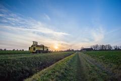 IMG_9864 (Bad-Duck) Tags: vinter mat ropa hst ker betor kvll skrd flt jordbruk lantbruk rstid livsmedel sockerbetor fltarbete livsmedelsproduktion betupptagare