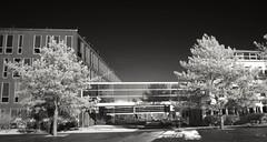 Building connections (Carlos Lubina) Tags: architecture blackwhite bonn infrared architektur infrarot bonngermany