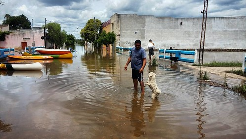 Flood stricken Concordia Resident Claudio Gonzalez returns home wading what used to be a railroad. Cuchito, his dog, seems happy to return to what remains of a home that still stand @cnni @cnnee