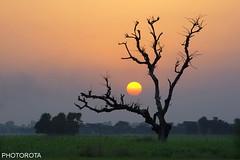 FAREWELL (PHOTOROTA) Tags: pakistan nikon farewell punjab flicker abid d610 photorota
