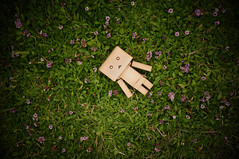 Alone (little  lovelies) Tags: danbo danboard revoltech toy original yotsuba greens flowers