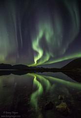 Dancing queen aurora at Buksnesfjord, Andy (hongisen) Tags: aurora norway lake visipix
