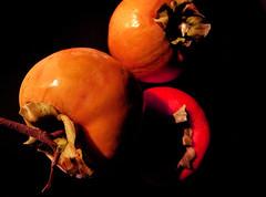 Cachi (Ele.sal) Tags: cachi arancio orange frutta nero autunno tre arancione verde persimmon green rotondo frutto pianta