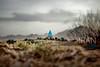 picShot (MohTal_MHTMB) Tags: mohtal mohtalmhtmb iran iranian mohammad hosein talebiyan tehran esfahan moghaddam mhtmb pic picshot shot photographer picshotphotographer محمد حسین طالبیان ایران