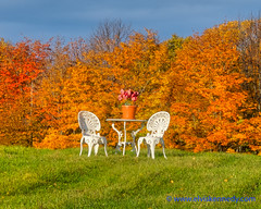 Fall into Winter - Equinox to Solstice #33 - Picnic (elviskennedy) Tags: 2490 autumn birch blue bright chairs colors dinner doorcounty drive elm elmarit elvis elviskennedy evergreen fall fallcolors farm farmer field flowers foliage gillsrock gold hdr highdynamicrange highway42 kennedy lakemichigan landscape leaves leica leicasl lunch maple meal morning oak orange outdoors outside picnic pine red road roadtrip rural scenic serene sky sunny table tourist tree trees wi windyroad wisconsin wwwelviskennedycom yellow