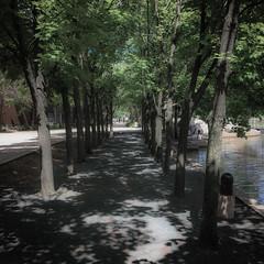 IMG_0928 (noahnoah55376) Tags: landsape park edina minnesota unitedstates