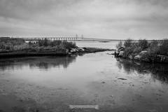 DSC00199 (grahedphotography) Tags: resundsbron resund oresund sweden swe denmark a7ii a7mk2 nature natur water ocean hav bridge beach blackandwhite grey malm limhamn