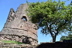 Keep (Dick Dangerous) Tags: uk wales britain skenfrith castle marches monmouthshire keep ruin