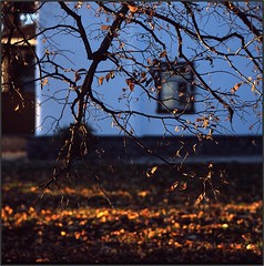 Kiev Lavra. Ukraine (Yuriy Sanin) Tags: kievrus kiev mamiya c220 provia 6x6 yuriysanin colour trees wall white leaves yellow юрийсанин лавра стена белая цвет