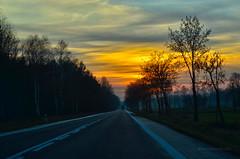 Sunset & DK78 road (ChemiQ81) Tags: polska poland polen polish polsko chemiq  poljska polonia lengyelorszgban  polanya polija lenkija  plland pholainn   pologne puola poola pollando    szczekociny grabiec bonowice fog foggy evening wieczr jesie jesienny autumn podzim road droga ulica street outdoor dusk