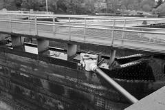 2016-11-19--16 (Al Stern) Tags: chittenden locks maintenance seattle ballard