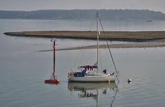 Calm Morning (Tilney Gardner) Tags: arne dorset boat harbour reflection nikon landscape seascape poole