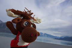 DSC01364 (The Crochet Crowd) Tags: crochetmoose amigurumi moose crochet doll alaska britishcolumbia thecrochetcrowd michaelsellick jeannesteinhilber danielzondervan crochetcruise mooseontheloose