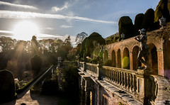 The Terraces (The Crewe Chronicler) Tags: nt nationaltrust terraces terrace gardens powiscastle powis castle canon canon7dmarkii tamron sun lowsun sunset statue statues flare lensflare