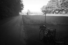 6:30 in Skåne (Till Billy) Tags: travel light shadow camp bw sun bike bicycle sweden schweden rando sw singlespeed sverige surly fahrrad touring crosscheck randonneur carradice bivouac biwak