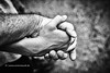 Father and Son (Armin Staudt) Tags: family bw white black macro men closeup hands peace father son human together hold mutual holdhands