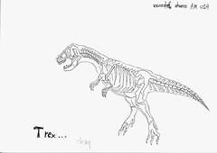 Skeleton.โครงกระดูก วรเชษฐ์ เด่นดวง