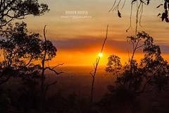 Sunset (Dhiren Adatia) Tags: lighting trees sunset clouds photography perfect view creative australia adventure saturdaynight perth cinematic westernaustralia mothernature bloodorange skyonfire zigzags travelphotography kalamunda skyporn bloodsunset
