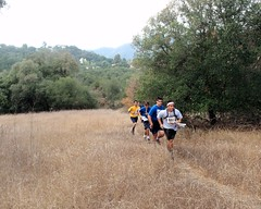 022 Cross Country Sprint (saschmitz_earthlink_net) Tags: california statepark losangeles orienteering santamonicamountains topangacanyon losangelescounty 2015 laoc losangelesorienteeringclub