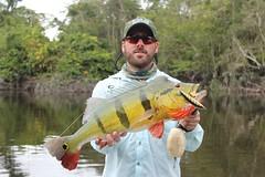 Amazonia 2012 (81)