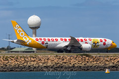 9V-OJE Scoot B789 YSSY -2228 (Matty 8o) Tags: birthday new wales plane canon airplane photo airport outdoor aircraft air south transport flight jet sydney engine twin australia international photograph transportation airline nsw planes vehicle pax passenger boeing airways 50th airlines syd departure scoot spotting airliner tz twinengine singapores jetliner planespotting b787 spotter yssy tz1 planespotter majulah tz2 planephotography 700d b7879 55250mm sco2 b789 sco1 9voje